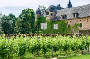 Location gîte, chambres d'hotes Château de Labro - Les Collectionneurs dans le département Aveyron 12