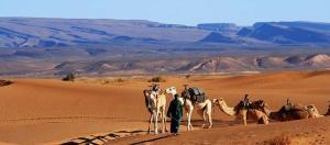 obrázek - Bivouac Maroc Désert Zagora