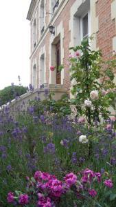 Location gîte, chambres d'hotes Fleur De Senon dans le département Meuse 55