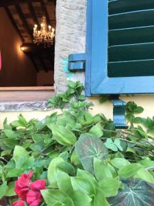 Casa Mia A Cortona, Apartmány  Cortona - big - 37