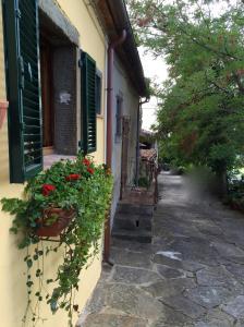 Casa Mia A Cortona, Apartmány  Cortona - big - 42