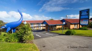 Hostels und Jugendherbergen - Blue Whale Motor Inn & Apartments