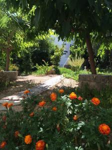 Patmos Villas, Appartamenti  Grikos - big - 138