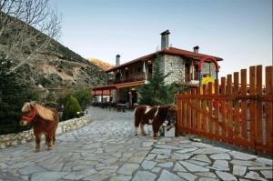 Koustenis Village (24 of 48)