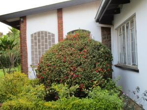 Longonot Guest House, Vendégházak  Lilongwe - big - 37