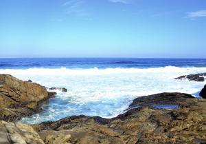Blue Whale Resort, Villaggi turistici  George - big - 25