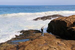 Blue Whale Resort, Villaggi turistici  George - big - 23