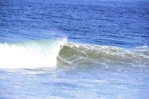 Blue Whale Resort, Dovolenkové parky  George - big - 32