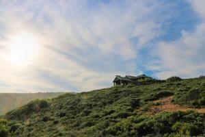 Blue Whale Resort, Villaggi turistici  George - big - 19