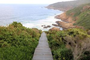Blue Whale Resort, Villaggi turistici  George - big - 17