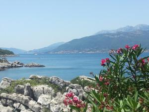 Holiday Home Brinic, Holiday homes  Tivat - big - 6