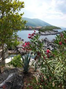 Holiday Home Brinic, Holiday homes  Tivat - big - 11