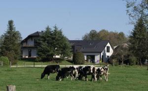 Location gîte, chambres d'hotes La Noue Aubain dans le département Haute Saône 70