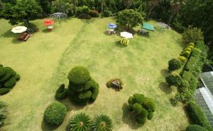 Jeju Dioville Pension, Дома для отпуска  Согвипхо - big - 45