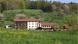 Dornröschen - Höchst im Odenwald