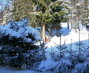 Holiday Home Vříšťalka, Nyaralók  Sněžné - big - 6