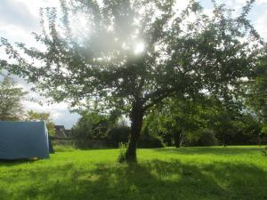 Location gîte, chambres d'hotes Fontaineblhostel hostel & camping near Fontainebleau dans le département Seine et Marne 77