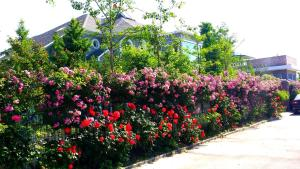 Jinan National Science International Golf Spa Villa, Vily  Ťi-nan - big - 10