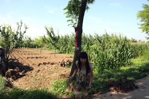 Beijing Laozhang Garden Farmstay, Case di campagna  Yanqing - big - 37