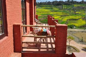 The Little House in the Rice Fields