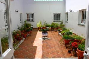 Hotel Puerta del Parque, Szállodák  Prado del Rey - big - 14