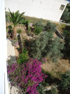 Studio Mare Agistri Greece