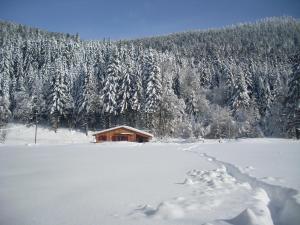 Location gîte, chambres d'hotes Chalet au bord du lac de Longemer dans le département Vosges 88