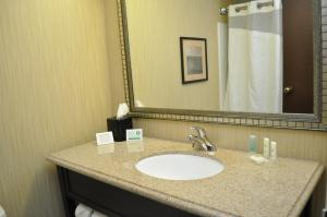 Comfort Inn Oak Ridge, Hotels  Oak Ridge - big - 4