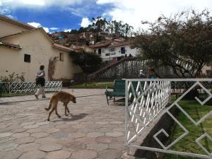 Casa De Mama Cusco - The Treehouse, Aparthotels  Cusco - big - 96