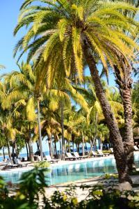The Ravenala Attitude, Resort  Balaclava - big - 57