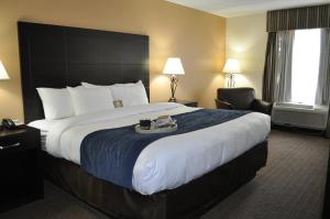 Comfort Inn Oak Ridge, Hotels  Oak Ridge - big - 2