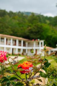 El Cafetal, Hotely  Canchaque - big - 12