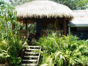 obrázek - Mango tourist Hostel