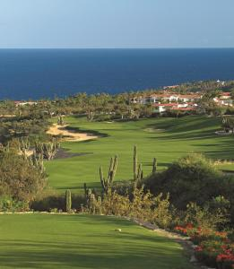 One&Only Palmilla (6 of 131)