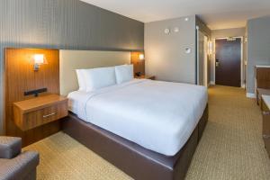 DoubleTree by Hilton Nanuet, Отели  Нанует - big - 15
