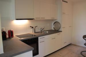 Swiss Borzoi House, Bed & Breakfast  Bellerive - big - 17