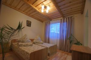 U Slavika - Hotel - Yasinya