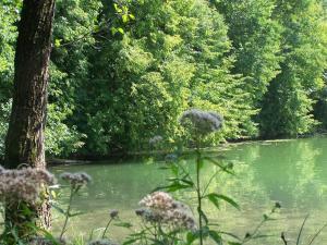 Domek na Skraju Wsi, Chaty v prírode  Konopki Wielkie - big - 27