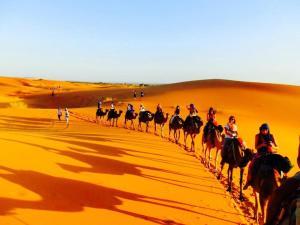 Moda Camp Merzouga - Camel Quad Sunboarding ATV