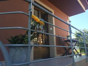 Apartamento Sanxenxo Vilalonga - Forxan