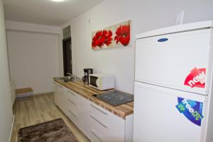Studio Premium Mureșenilor, Апартаменты  Брашов - big - 9