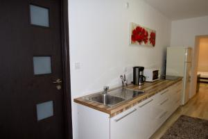 Studio Premium Mureșenilor, Апартаменты  Брашов - big - 10