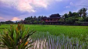 obrázek - Mandala Desa