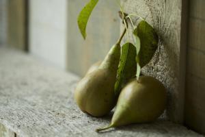 Pear Tree Inn (32 of 70)