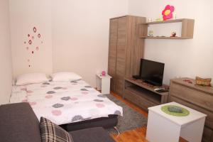 Pedestrian Zone Apartment, Апартаменты  Белград - big - 5
