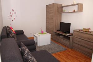 Pedestrian Zone Apartment, Апартаменты  Белград - big - 14