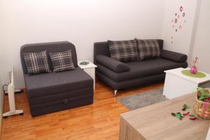 Pedestrian Zone Apartment, Апартаменты  Белград - big - 15