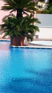 Hotel Splendid, Hotely  Diano Marina - big - 92
