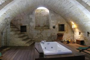 Chateau de Forges - Angles-sur-l'Anglin