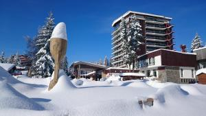 Grand Hotel Murgavets - Pamporovo